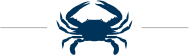 Crustacea Crab